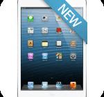 iPad 5 and iPad mini 2