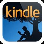 Уникальная читалка Amazon Kindle для iPad